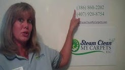 Tile Cleaning Pierson, Fl, Steam, Tile and Grout Cleaning 32764