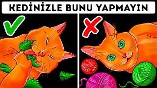Kedi Sahiplerinin Sürekli Yaptığı 26 Tehlikeli Hata