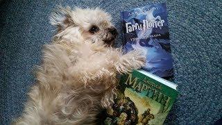Книги фэнтези: Harry Potter & Game of Thrones.