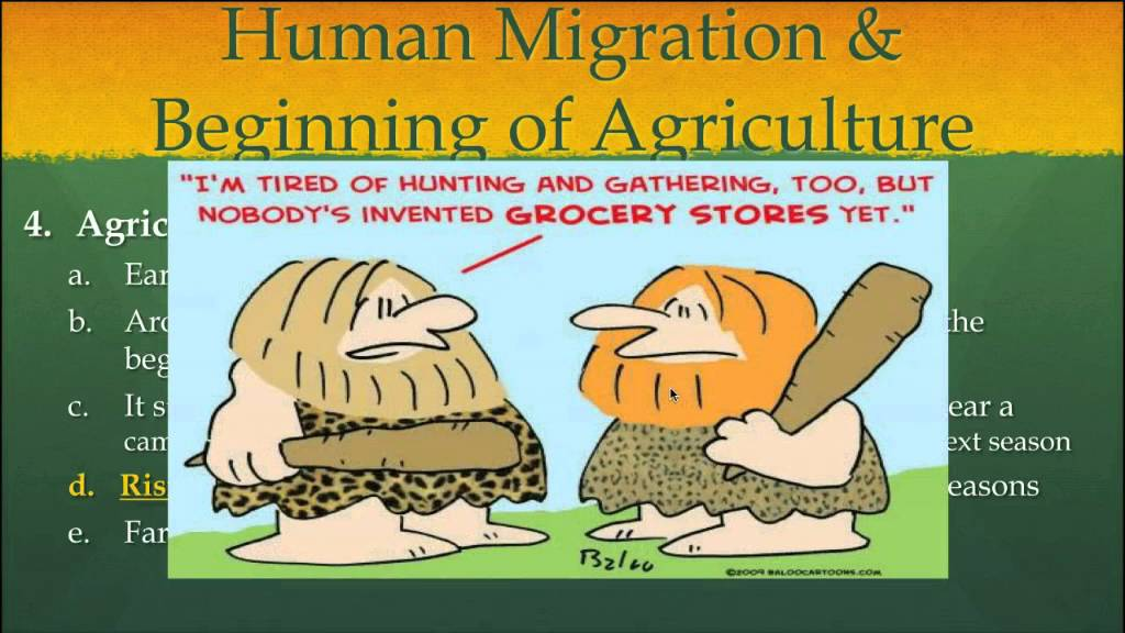 the beginning of agriculture The domestication theory: this theory says that humans first gave up their nomadic ways, then began domesticating plants the innovation and specialization theory : this is a relatively recent theory (2008), which treats agriculture as a form of specialization coming from two factors: higher population densities and innovation.