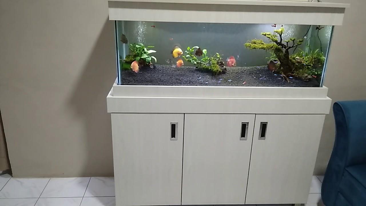 Meja Aquarium Minimalis Rak Sepatu Min Youtube