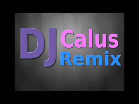 Flo Rida Ft. Sia- Wild Ones (Calus Qlub Mix)