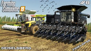 Harvesting soybeans & corn with IDEAL 9T | Animals on Geiselsberg | Farming Simulator 19 | Episode 8