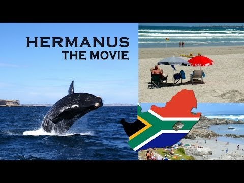Hermanus the Movie, in South Africa