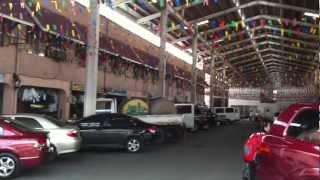 Cartimar Pet Center Taft Avenue Pasay City Hourphilippines Com
