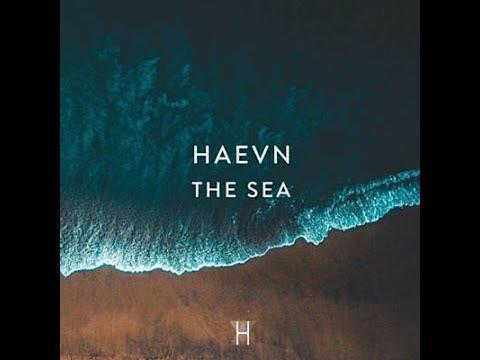 HAEVN - The Sea Lyrics🎵
