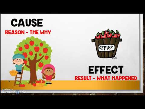 Cause and Effect Connections