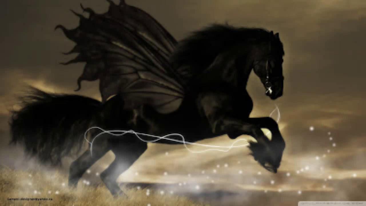 Download 3000 Wallpaper Black Horse HD Terbaru