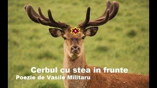 Vasile Militaru Cerbul cu stea in frunte - recita Valentin Borodachi