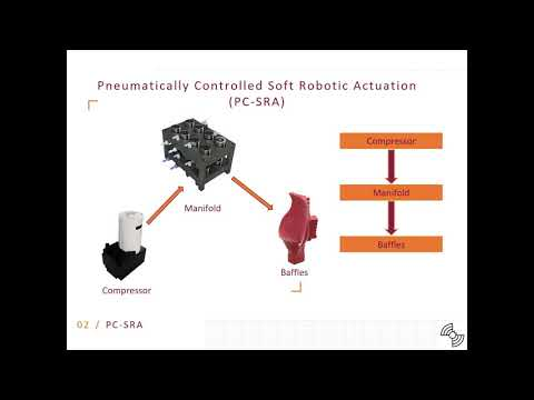 Development of soft robotic actuation system for biomimetic dynamic sonar head