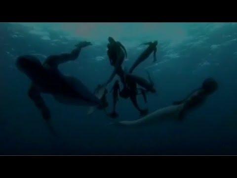 Русалки реально существуют в водоёмах