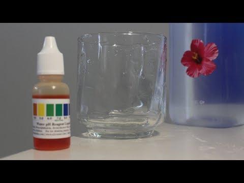 Fiji Water PH Level Test   Acidic, Neutral, Or Alkaline?