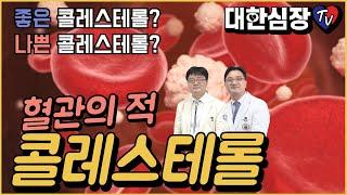 혈관의 적 콜레스테롤