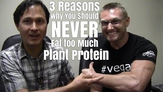 3 Reasons Why You Should Never Eat too Much Plant Protein