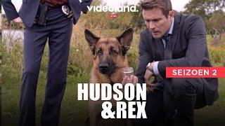 Tweede seizoen van Hudson & Rex nu te zien op Videoland (trailer)