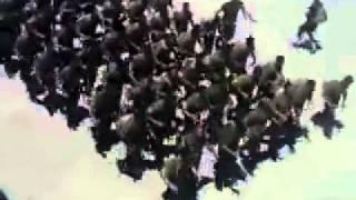 Chants et entrainements de la Garde Nationale (Tunisie)