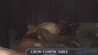 RND102 - CROW CORPSE TABLE