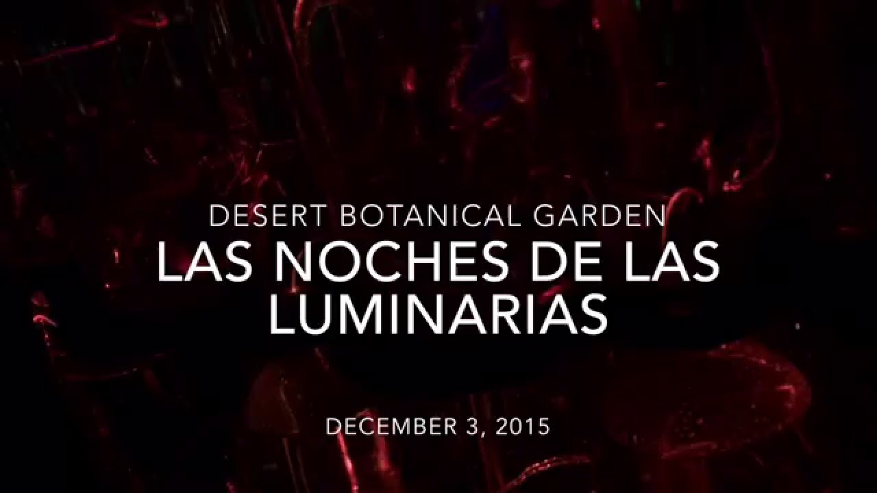 Las Noches De Las Luminarias @ The Desert Botanical Garden // Dec 3, 2015