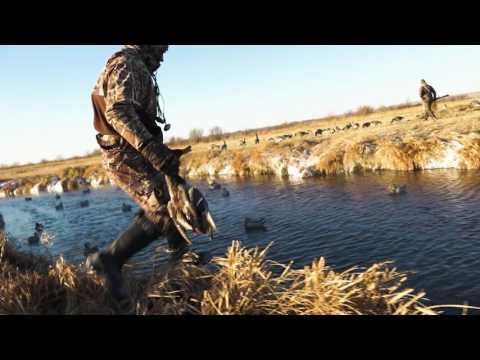 Western Nebraska Ducks & Pheasants | Cabela's Northern Flight
