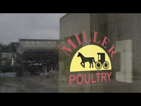 Whole Foods Market's Supplier of the Year, Miller Poultry l Whole Foods Market