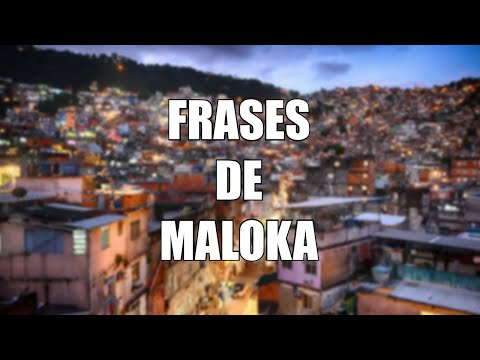 Frases de Maloka para Status: Maloka Frases 1