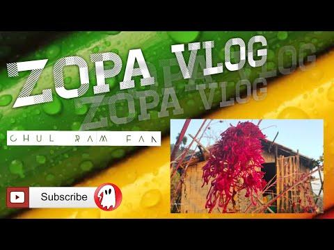 Zopa Vlog : Mizo Jhum (Shifting Cultivation)