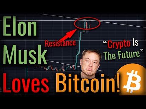 Elon musk bitcoin trading fraud