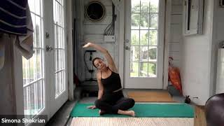 Beginner/Intermediate Yoga - Session 14