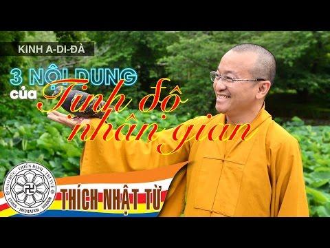 Kinh A-di-đà: Ba nội dung của Tịnh Độ Nhân Gian (14/12/2005)