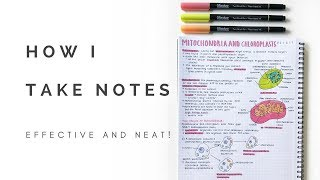 How I take notes (neat and effective) | studytee