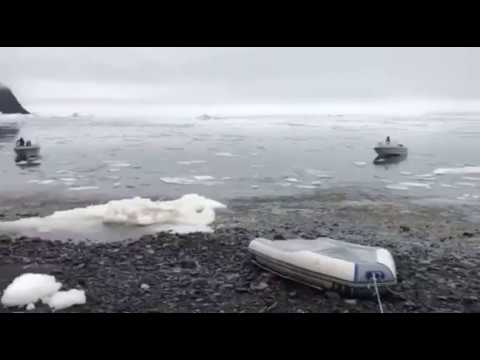 Video Captures Moment When Tsunami Hits Greenland's West Coast