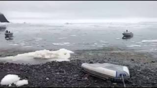 Video Captures Moment When Tsunami Hits Greenland