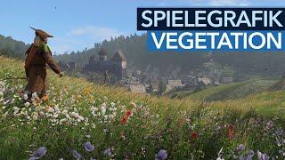 Vegetation in Spielen - 3D-Grafik im Wandel der Zeit