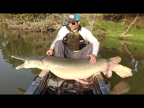 How To Catch Big Alligator Gar On A Lure