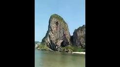 Bule bogel PODA ISLAND KRABI THAILAND