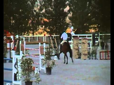 Calisco - Arnaldo Bologni 2° 7 anni Eccellenza Alviano 2014