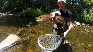 "Award-Winning film - ""Welcome to the Mountains"" - Fly Fishing North Carolina"