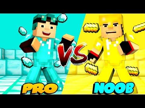 Minecraft - NOOB Vs PRO