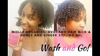 NEW: Mielle Organics Wash and Go!  (First impressions): 😛