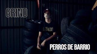 GRIND - PERROS DE BARRIO