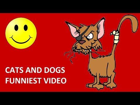 cats and dog funniest video || try not to laugh || बिल्लियों और कुत्तों सबसे मजेदार वीडियो