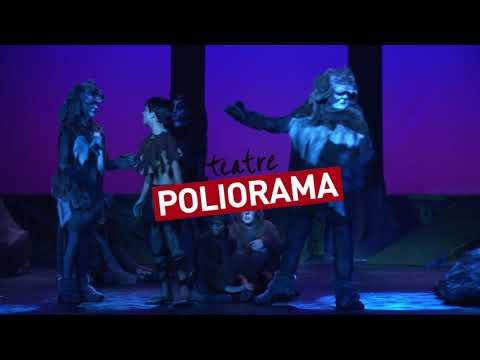 el-llibre-de-la-selva-al-teatre-poliorama