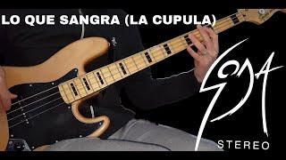 Soda stereo lo que sangra la cupula cover bajo #sodastereo #loquesangra #zetabosio #cerati#basscover