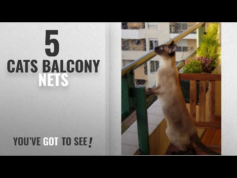 Top 10 Cats Balcony Nets [2018]: Trixie Protective Net, 4 x 3 m, Transparent