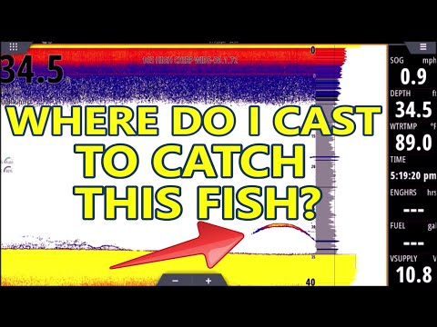 Sonar For Dummies! Fish Finder Explained For BEGINNERS!  (L6)