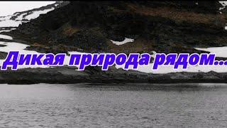 Морская рыбалка Баренцево море 12 мая 2021 г Не клевало