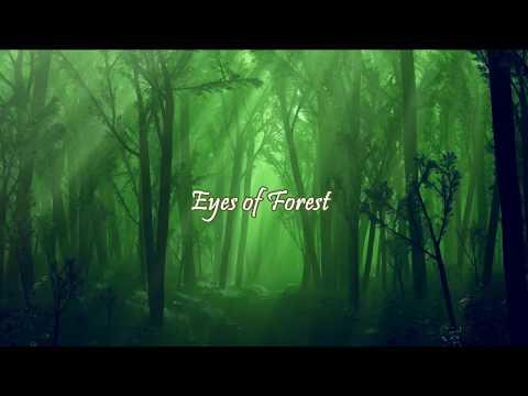 Rentrer en Soi - Eyes of forest [SUBBED ENG/PT]