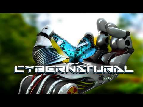 Electro Silver/Cybernatural - Dj Set - Digital Nexus Gradac EKO Festival
