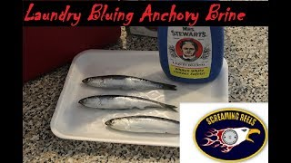 Best Anchovy Brine on the West Coast! With Mrs Stewarts Laundry Bluing!