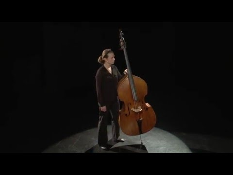 Double Bass Instrument Position